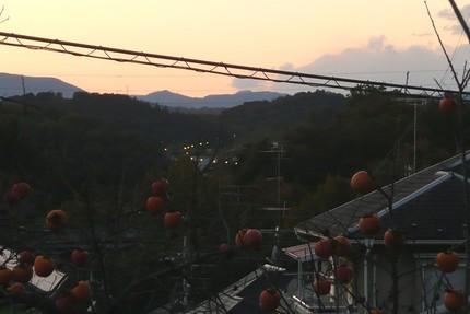 Fuyutomosi