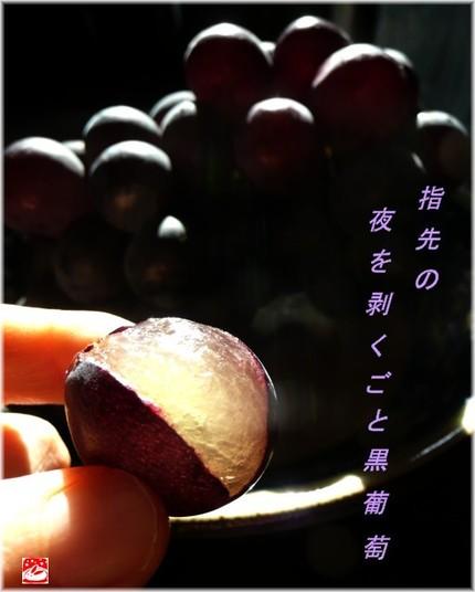 Kurobudo2
