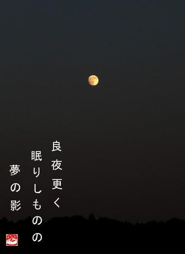 Ryoya_2