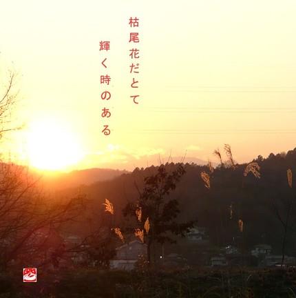 Kareobana_2