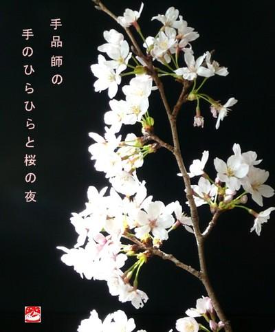 Sakurayo