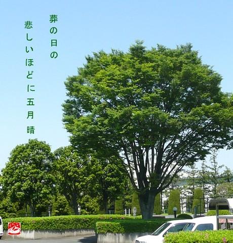 Sounohi2
