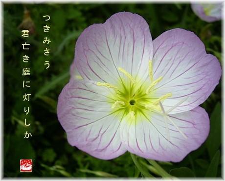 Hiruzaki4_2