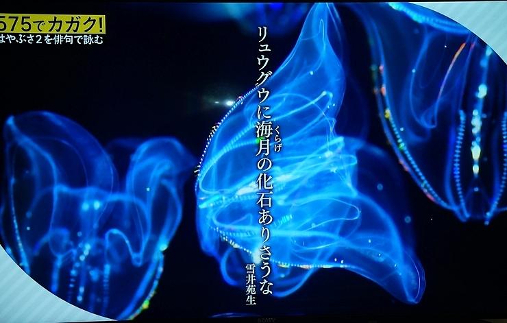 Hayabusa2hosei