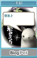 Meiokoru2
