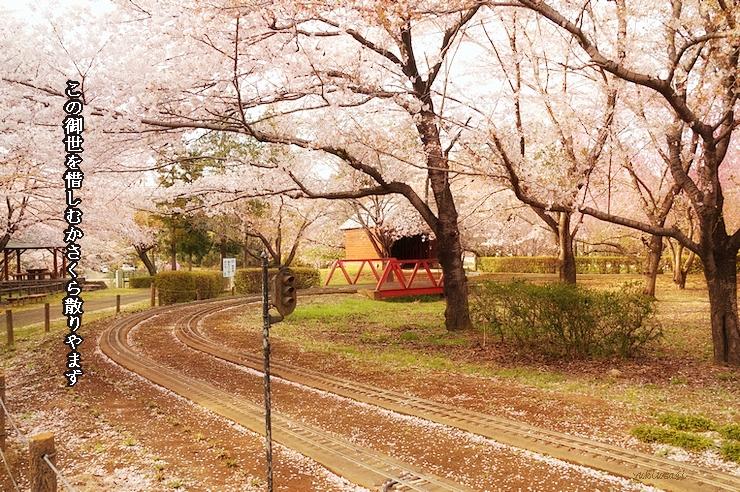Sakura0412hosemoji