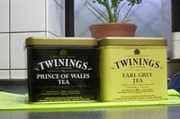 Twinigs