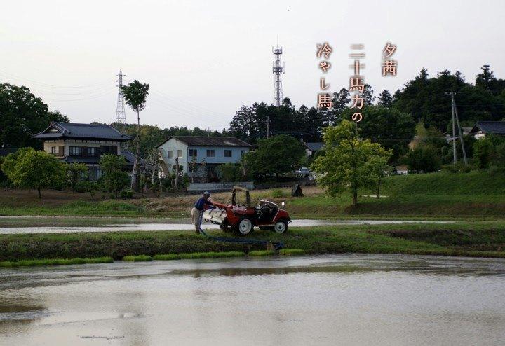 Hiyasiuma2
