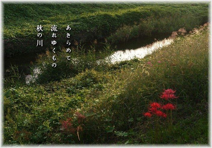 Akikawa2