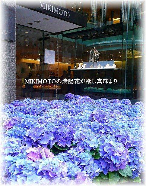 Mikimotomoji