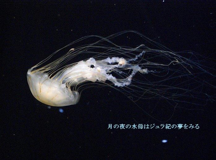 Akakuragemoji