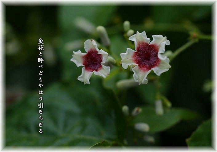 Yaitomoji