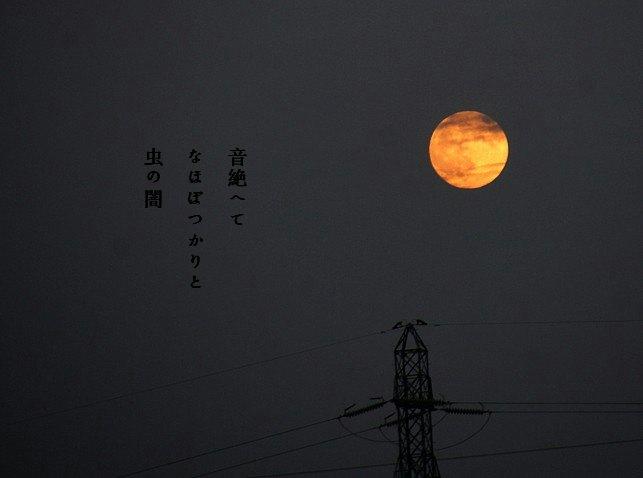 Musinoyamimoji2