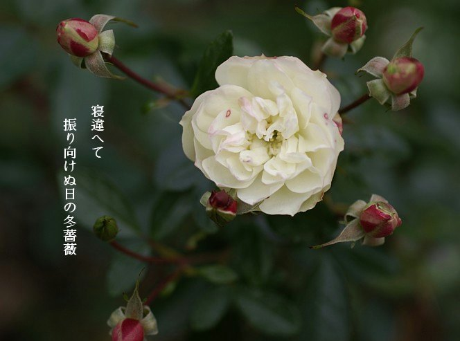 Fuyusoubi2moji