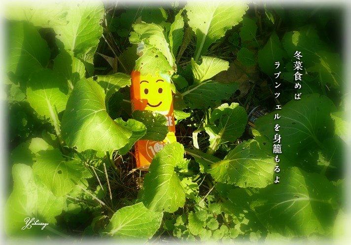 Fuyuna1bmoji