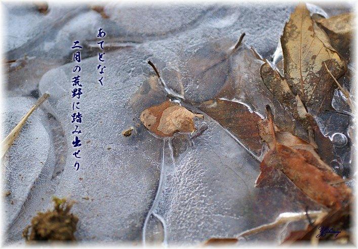 Nigatumoji