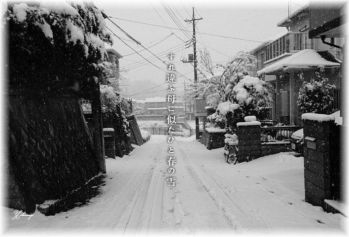 Haruyukimoji