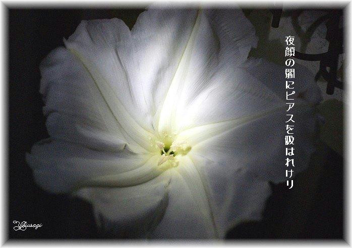 12yorugaomoji2