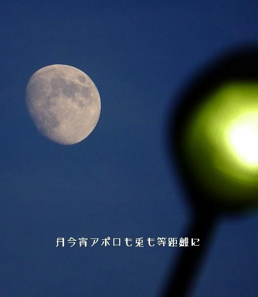 Tukikoyoi2moji_3