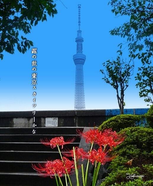 Skytree1glanmoji