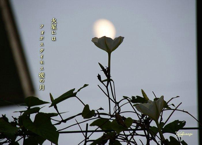 Yugaotuki2moji
