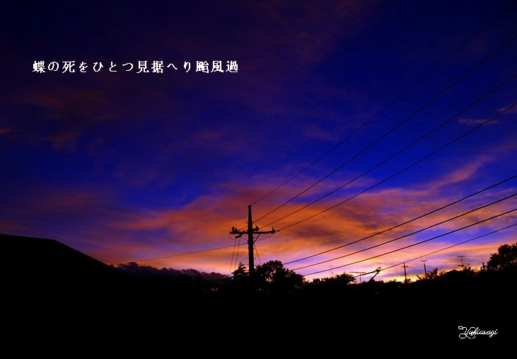 Taifuka916moji