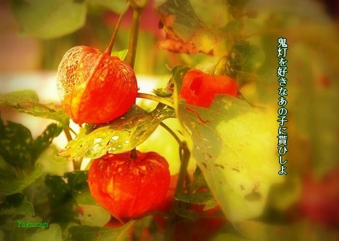 Hozuki2moji