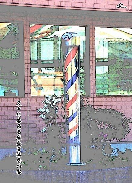Tokoyahoseimoji2
