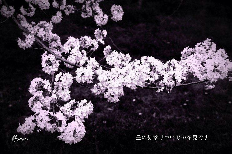 Usinokoku3hoseimoji_2