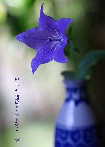 Kikyoumoji