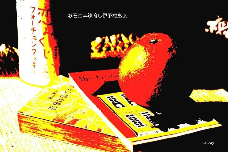 Iyokan26moji