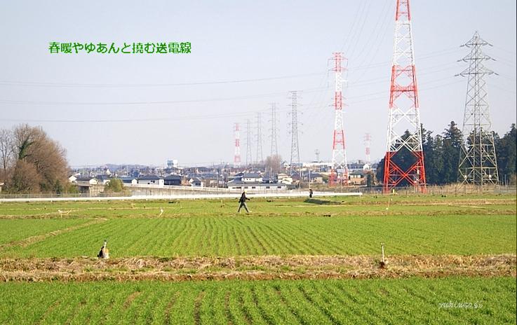 Densen110401bhoseimoji