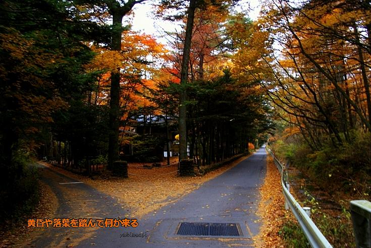 Karuizawahoseimoji