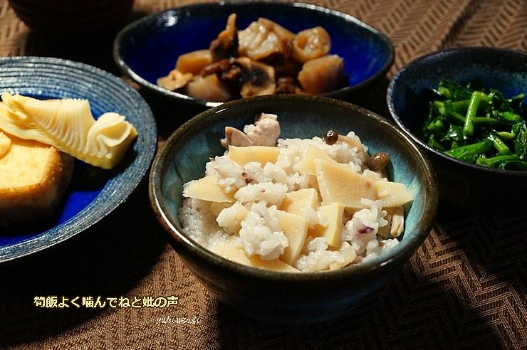 Takenoko0429hoseimoji